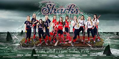 Sharks in Water Banner Jones Photography