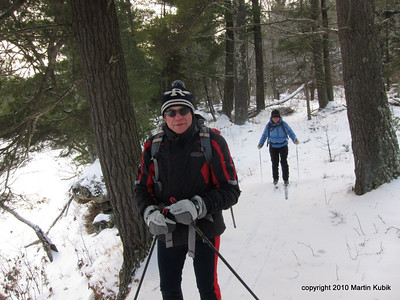 White pines line the trail.