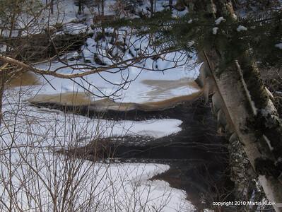 Beaver tracks on ice.