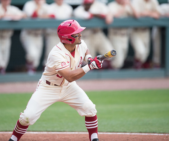 Arkansas infielder Michael Bernal (3) squares to bunt during a baseball game between Arkansas and Western Illinois on 3-5-16.   (Alan Jamison, Nate Allen Sports Service)
