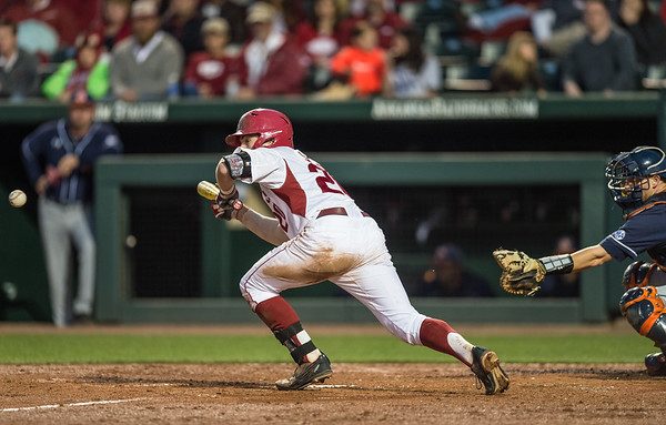 Arkansas catcher Carson Shaddy (20) bunts during a baseball game between Arkansas and Auburn on 3-26-16.  (Alan Jamison, Nate Allen Sports Service)