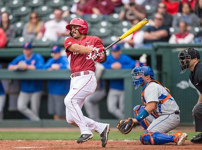 Arkansas infielder Michael Bernal (3) hits during a baseball game between Arkansas and Florida on 4/16/2016.   (Alan Jamison, Nate Allen Sports Service)