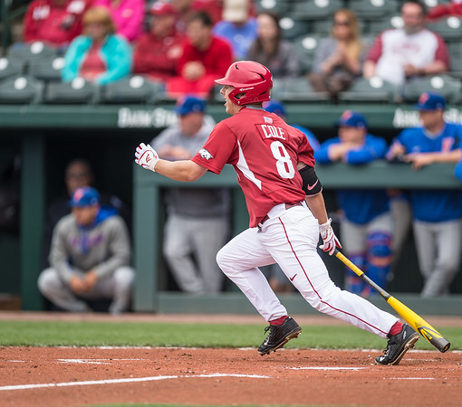 Arkansas outfielder Eric Cole (8) bats during a baseball game between Arkansas and Florida on 4/16/2016.   (Alan Jamison, Nate Allen Sports Service)