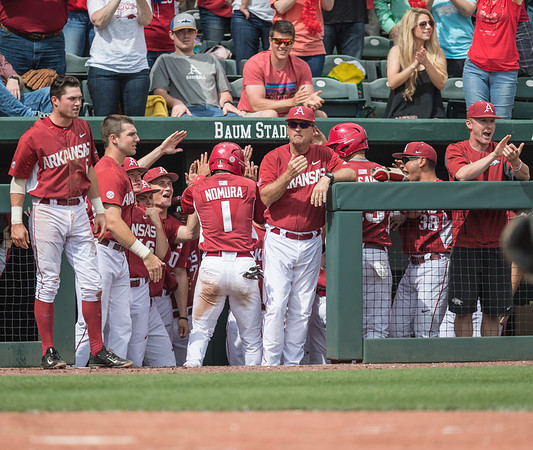 Arkansas infielder Rick Nomura (1) celebrates a run during a baseball game between Arkansas and Texas A&M University on 4/30/2016.   (Alan Jamison, Nate Allen Sports Service)