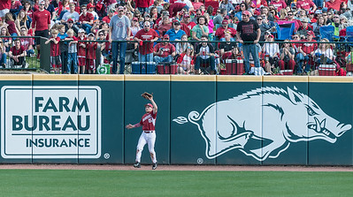 Arkansas outfielder Jake Arledge (15) fields a long fly ball during a baseball game between Arkansas and Miami (Ohio) on Saturday. 2/18/2017.  (Alan Jamison, Nate Allen Sports Service)