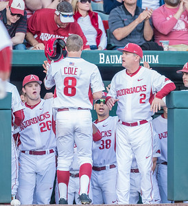 Arkansas outfielder Eric Cole (8) is congratulated by Jack Benninghoff and Dave Van Horn after he scores during a baseball game between Arkansas and Central Michigan on 2-19-16.   (Alan Jamison, Nate Allen Sports Service)