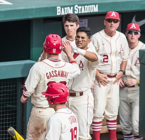 Arkansas infielder Michael Bernal (3) congratulates Arkansas infielder Cullen Gassaway (29) on his run during a baseball game between Arkansas and Central Michigan on 2-21-16.   (Alan Jamison, Nate Allen Sports Service)