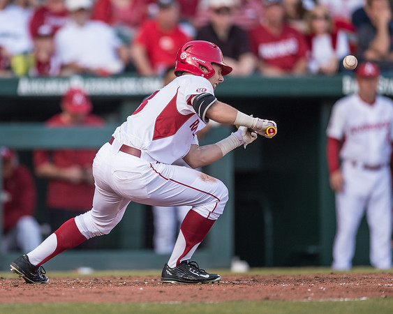 Arkansas outfielder Eric Cole (8) bunts during a baseball game between Arkansas and Central Michigan on 2-19-16.   (Alan Jamison, Nate Allen Sports Service)