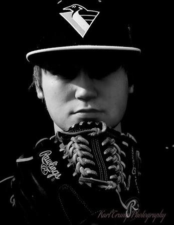 Baseball Portraits (Dalton) 2014