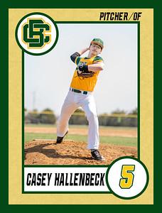 Casey1 baseball banner 36x48-Banner