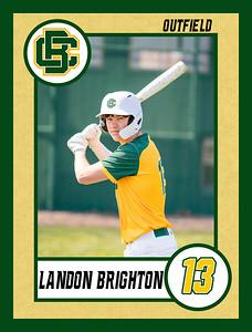 Landon3 baseball banner 36x48-Banner