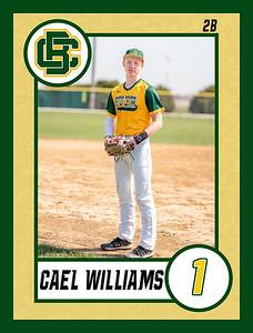 Cael1 baseball banner 36x48-Banner