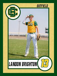 Landon1 baseball banner 36x48-Banner