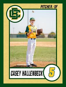 Casey3 baseball banner 36x48-Banner