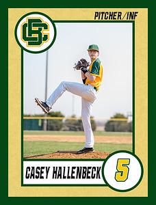 Casey4 baseball banner 36x48-Banner