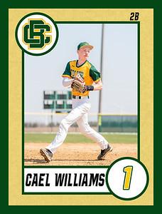 Cael2 baseball banner 36x48-Banner