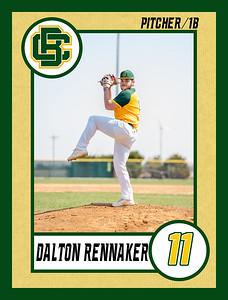 Dalton1 baseball banner 36x48-Banner