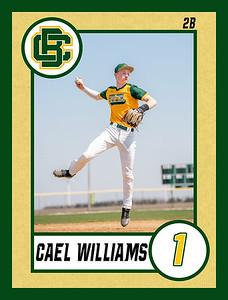 Cael3 baseball banner 36x48-Banner