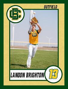 Landon2 baseball banner 36x48-Banner