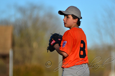 Denville Little League 2013