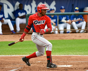 Orem Owlz battle Ogden Raptors in Pioneer League Action