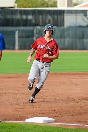 Idaho Falls Ogden Baseball