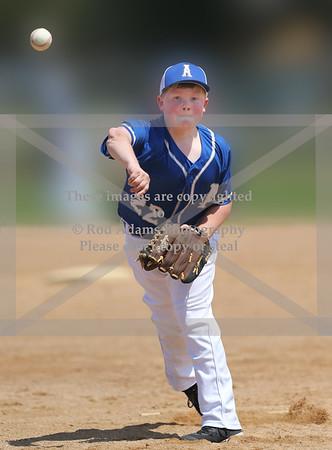 2015 Youth Baseball