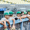 2016 Eagle Rock vs Franklin Baseball City Championship