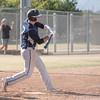 Palm Desert Baseball LOHS-8241