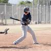 palm desert baseball LOHS-8182
