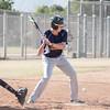 Palm Desert Baseball LOHS-8216