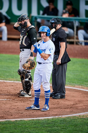Great Falls Ogden Baseball