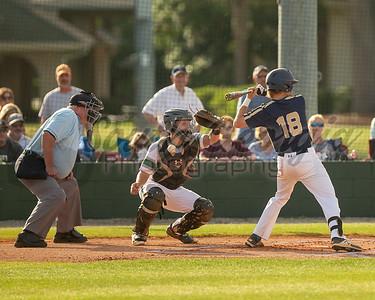 GISA Baseball: Tiftarea Academy falls 1-0,l 5-1 in Final Four to Frederica Academy