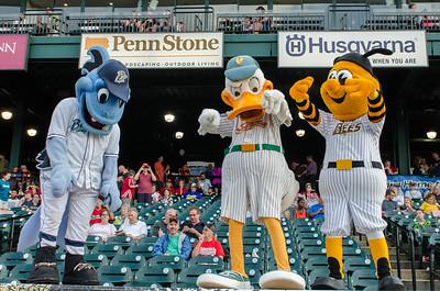 B.B. Bluefish, Quacker Jack, and Sting.