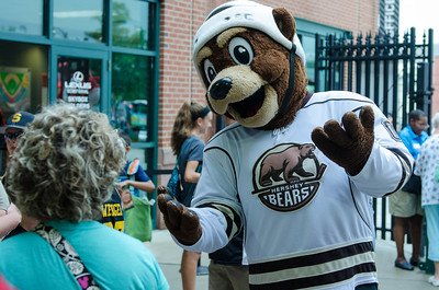 Coco, from the Hershey Bears