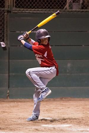 2014 Angels Turlock American Little League