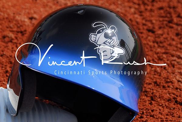 Bee's Baseball