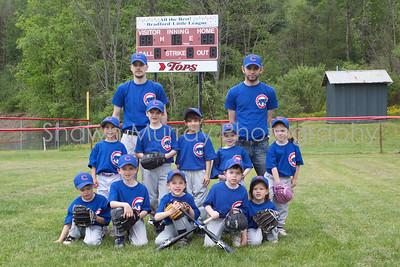 Cubs T-Ball_052210_0058