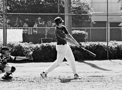 Diamond Devils Baseball - Charleston Labor Day weekend