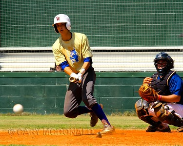 Diamond Devils Baseball - Columbia Sept 7 & 8