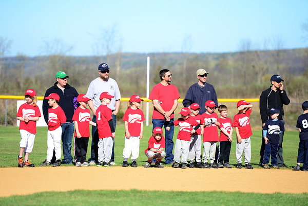 Duanesburg Little League 2013