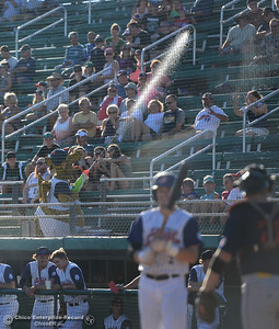 Heater attacks the crowd as the Chico Heat play the Marysville Gold Sox in the third game of a three-game series Saturday, July 30, 2016 at Nettleton Stadium in Chico, California. (Dan Reidel -- Enterprise-Record)