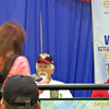 """SUNDAY, JULY 13TH<br /> Autograph Sessions:<br />  Gaylord Perry (Home Clubhouse Radio)<br /> <a href=""""http://mlb.mlb.com/mlb/events/all_star/y2014/fanfest/asg_legends_schedule.jsp"""">http://mlb.mlb.com/mlb/events/all_star/y2014/fanfest/asg_legends_schedule.jsp</a><br /> <br /> <br /> <br /> Gaylord Perry<br /> <a href=""""http://mlb.mlb.com/mlb/events/all_star/y2014/fanfest/asg_legends_appearance.jsp#gaylord_perry"""">http://mlb.mlb.com/mlb/events/all_star/y2014/fanfest/asg_legends_appearance.jsp#gaylord_perry</a><br /> Gaylord Perry pitched in the Major Leagues from 1962-1983 with the San Francisco Giants (1962-1971), the Cleveland Indians (1972-1975), the Texas Rangers (1975-1977, 1980) the San Diego Padres (1978-1979), the New York Yankees (1980), the Atlanta Braves (1981), the Seattle Mariners (1982-1983), and the Kansas City Royals (1983). A 1991 inductee to the National Baseball Hall of Fame, Perry was a five-time All-Star and was the winning pitcher in the 1966 All-Star Game. He no-hit the St. Louis Cardinals while pitching for the Giants on September 9, 1968. Perry was the first pitcher to win Cy Young Awards in both leagues. He was the winner of the 1972 American League Cy Young Award after going 24-16 with 29 complete games and a 1.92 ERA with the Indians. In 1978, he captured the National League Cy Young Award with a record of 21-6 and 2.73 ERA with the Padres. Overall, Perry went 314-265 (.542) in his career with a 3.10 ERA, and 303 of his 690 career starts went for complete games. He was a five-time 20-game winner."""