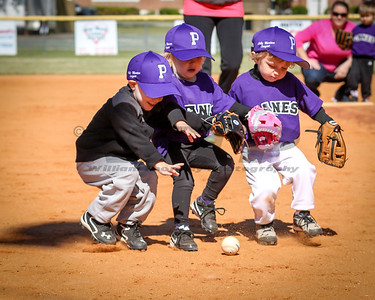 Providence Hurricanes Weeball Action 4-9-16