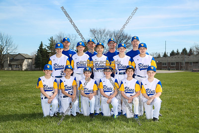 South Farmington Blues U12 Team Photos 2017