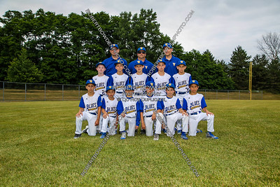 South Farmington Blues U9 Team Photos
