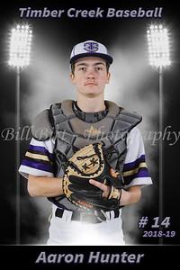 Aaron Hunter Baseball 18-19 flat