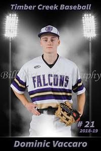 Dominic Vaccaro Baseball 18-19 flat