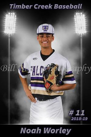 Noah Worley Baseball 18-19 flat