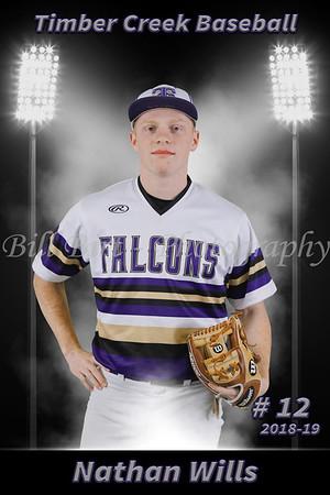 Nathan Wills Baseball 18-19 flat